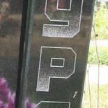 Nr.11